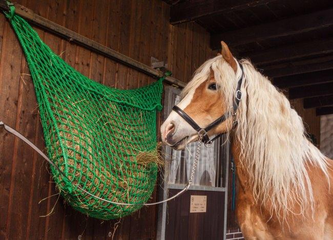 Futternetztasche für Pferde nach Maß | Schutznetze24